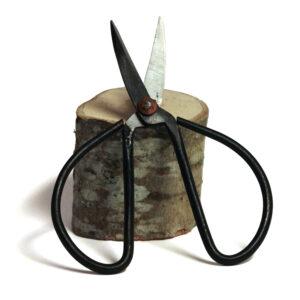 Bonsaisax för beskärning av kvistar och grenar