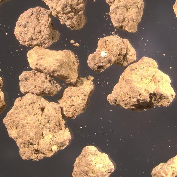 Mikroskopbild av akadama, 6,3x, Zeiss Primo Star