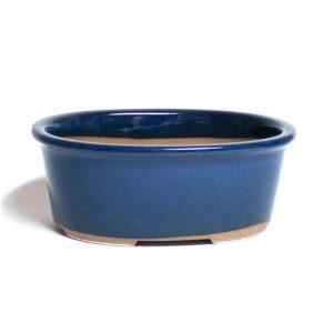 Ovaĺ, blå bonsaikruka